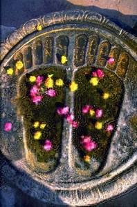 Buddha Footprints Sri Lanka Temple